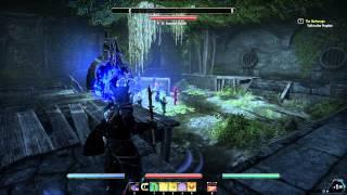 The Elder Scrolls Online - Имперский город DLC. Первый взгляд #58