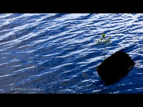 RELAX-Chinese Bamboo Flute Music-Beautiful Chinese Song-Peaceful Relaxation Calming Tranquil