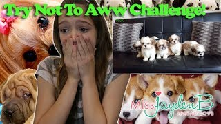 Try not to Aww Challenge !