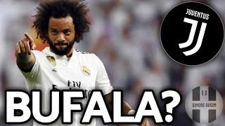 Marcelo ha chiesto di venire alla Juve?     Mercato Avsim