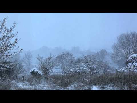 Vivaldi Four Seasons Winter-Gentle Falling Snow-Relax Emotional Classical Insturmental Music