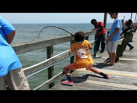 Giant Stingray Fishing From Oak Island (Yaupon) Pier!
