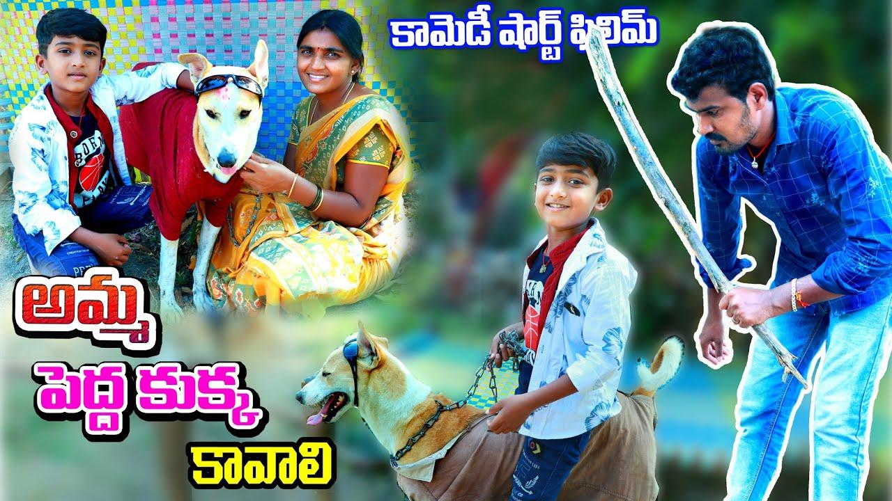 Download అమ్మ కుక్క కావాలి || Amma Kukka kavaali || Manu Videos || telugu letest all