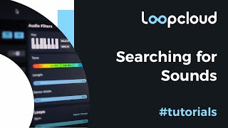 Searching for Sounds - Loopcloud 6