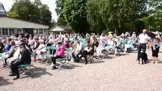 Nationaldagsfirande i Billesholm Folkets Park 6 juni 2015