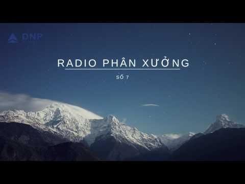 DNP Corp - Radio Phân xưởng số 7