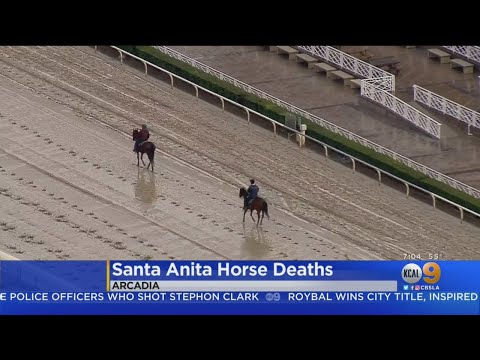 Protesters Converge In Santa Anita Following Death Of 20th Horse
