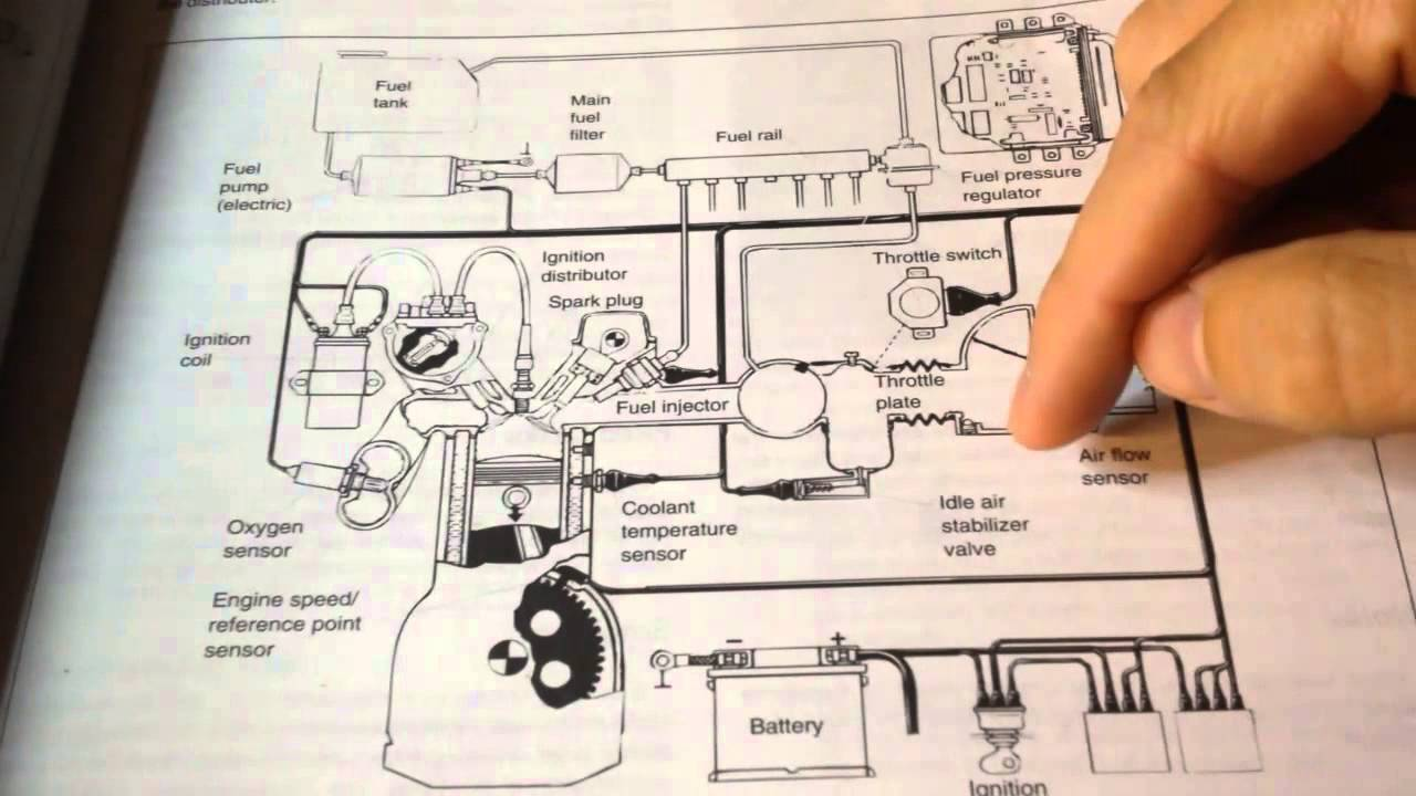 M50 Engine Wiring Diagram