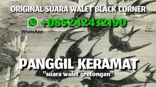 Download Mp3 Suara Panggil Walet Keramat