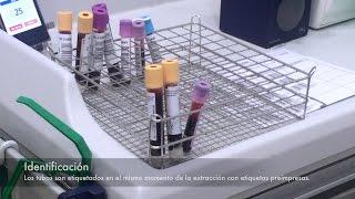 De sangre muestran coágulos de sangre análisis hacer