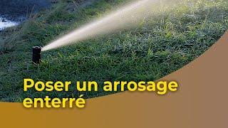 Arroseur de pelouse Prise UE Kit de syst/ème darrosage Automatique de syst/ème dirrigation Goutte /à Goutte 20m pour Plantation de Jardin Arroseur de pelouse Arroseur darrosage dherbe
