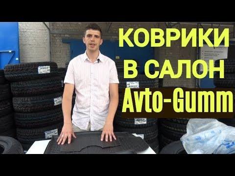 Автомобильные коврики Avto-Gumm. Обзор