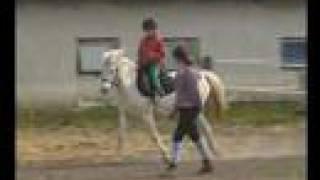 Vilike egyedül lovagol