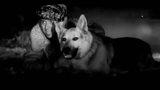 Ко мне, Мухтар (часть 12) Советский художественный фильм