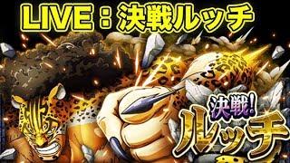 【LIVE】決戦ルッチ|検証&攻略【トレクル】