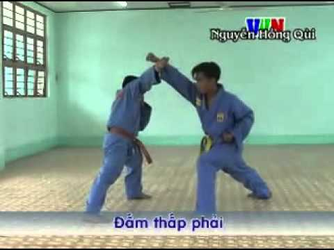 phan don tay co ban trinh do1