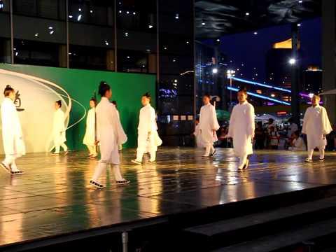 Wu shu performance at Shanghai World Expo 2009