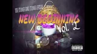 New Beginning Vol 2