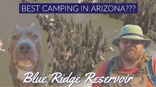 We Find the BEST CAMPING in ARIZONA on the MOGOLLON RIM ARIZONA at Blue Ridge Reservoir.