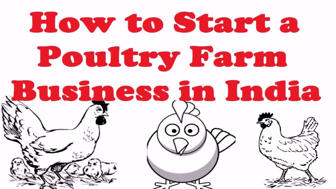 Small Scale Poultry House Design Pdf - Gif Maker DaddyGif com