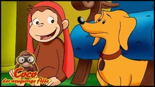 Coco der Neugierige 🐵206 Der doppelte Hektor 🐵 Ganze Folgen 🐵 Cartoons für Kinder🐵 Staffel 2
