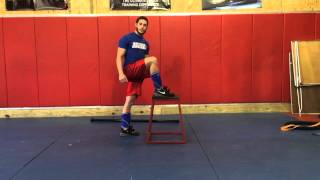 dsstrength.com - Hip Mobility Drill