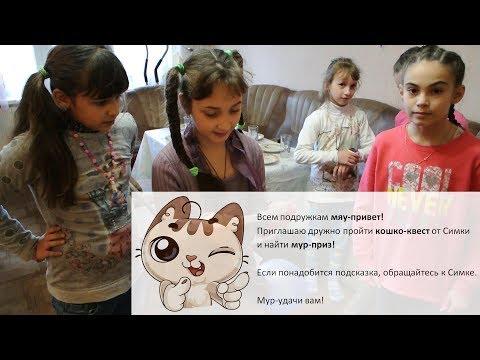 Кошко-Квест - домашний квест, идеи для квеста