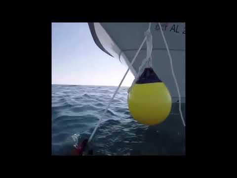 Scuba diving outta Panama City Beach 10 miles offshore