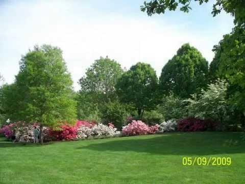 Azalea Gardens, Philadelphia