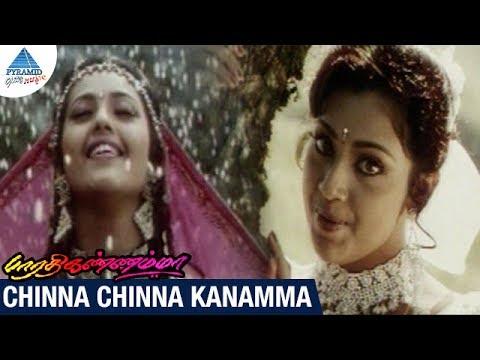 Bharathi Kannamma Tamil Movie Songs | Chinna Chinna Kannamma Video Song | Parthiban | Meena | Deva