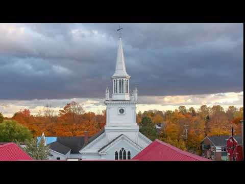 Spring to Autumn Season Change Hyperlapse