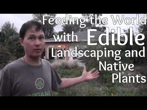 Feeding the World with Edible Landscaping and Native Plants
