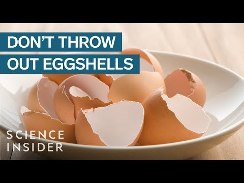 Why You Should Stop Throwing Out Your Eggshells