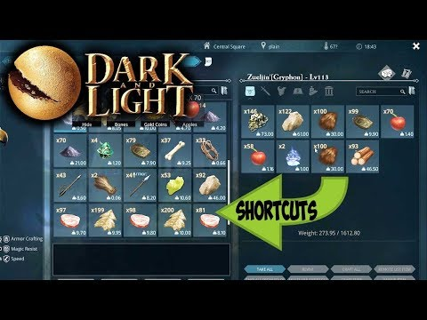 Dark and Light - Shortcut Keys + Tips & Tricks (Transfer Key, Drop Item Key (Dark and Light Tutorial