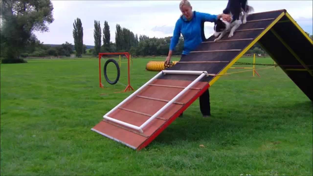 GRACE - running contact A-frame - YouTube