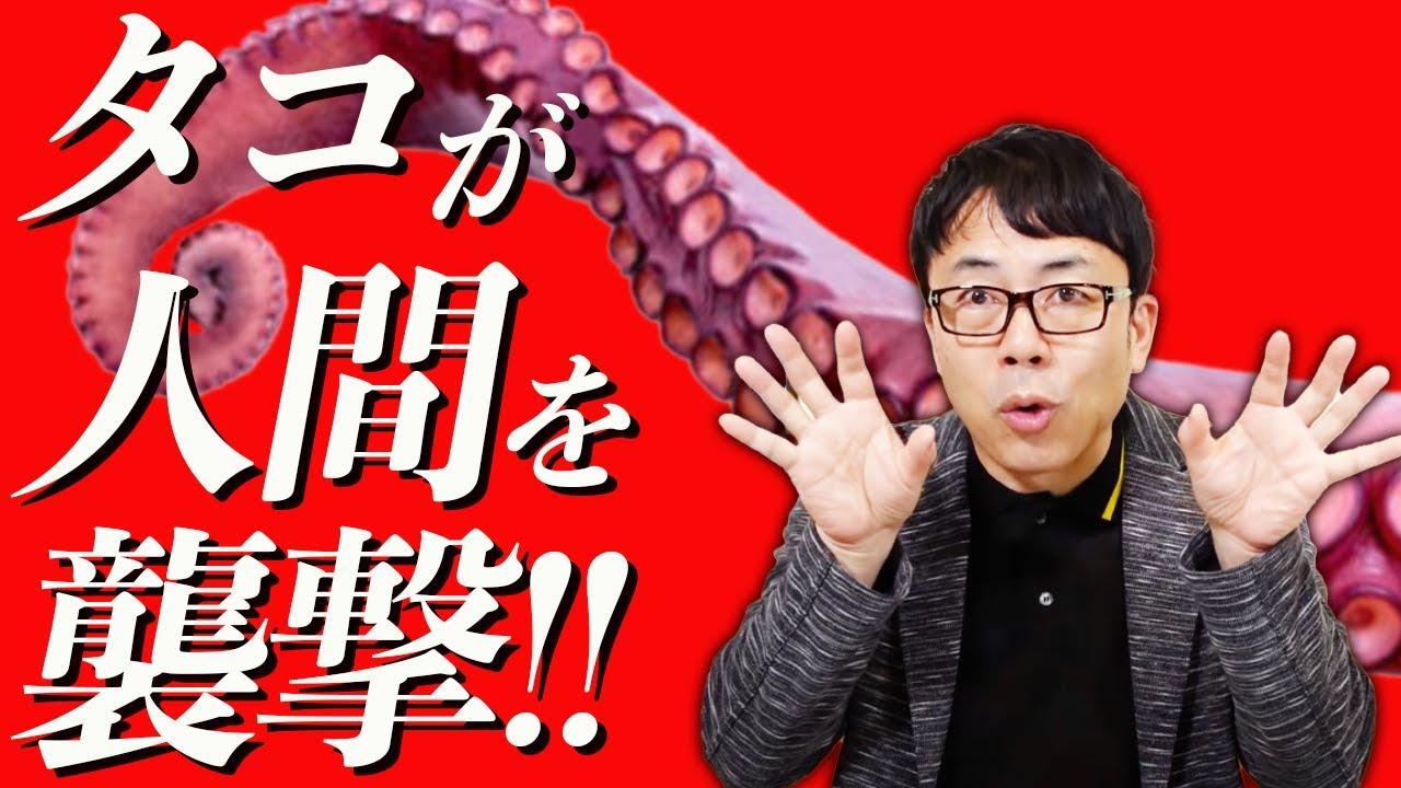 最近タコ動画をアップしてなかった大人の事情と、タコの恐るべき反撃について説明します。(概要欄に別動画リンク有り)|上念司チャンネル ニュースの虎側