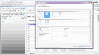 Input Controls on Business Objects 3.1