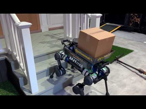 Continental robot delivery dog demo at CES 2019