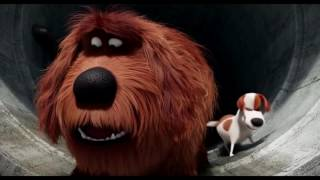 Max and Duke Sausage Party - The Secret Life Of Pets - Angel TV 🎥 thumbnail