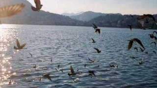 My Choice 2 - Alain Morisod - Birds at Lake Como