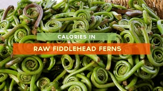 Calories In Fiddlehead [raw, Sauteed And Steamed Fiddleheads]