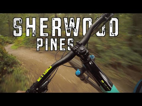 Sherwood Pines Mtb Red Route,Jumps And Downhill Trails