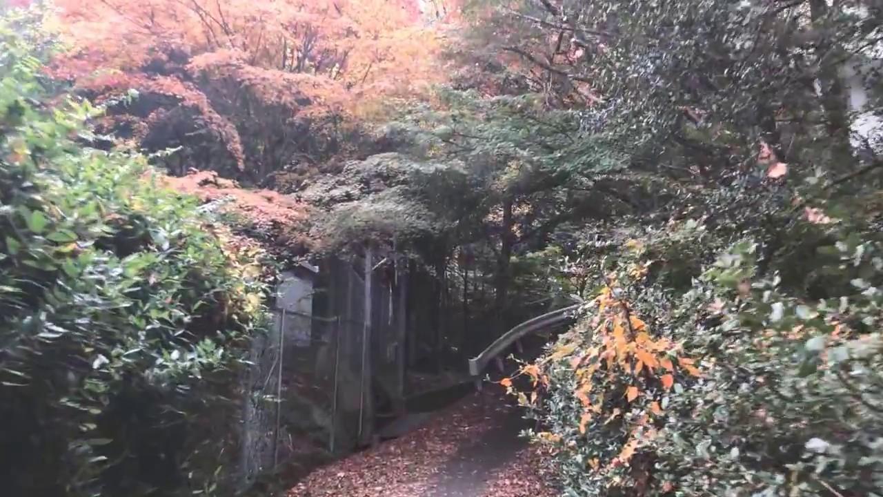 Walk around Arima Onsen to Mt Rokko cable car