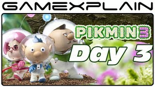 Pikmin 3 - Captain