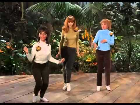 Gilligan S Island Don T Bug The Mosquitoes
