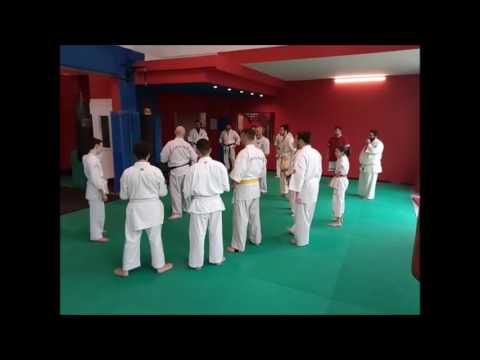 Ashihara Karate Seminar At 1st Shogun Fighting Club's Wintercamp 2017