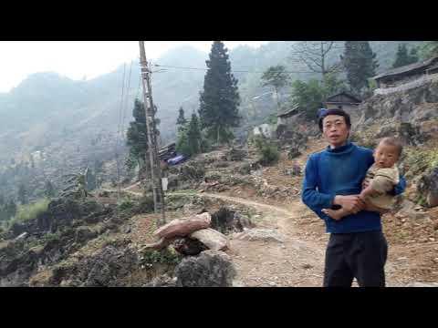 Vào Bản Hmong Xanh Vùng Cao Nguyên Đá Đồng Văn / Giàng Mí Chứ