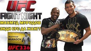 МАХМУД МУРОДОВ ЭНДИ UFC ДА ЖАНГ КИЛАДИМИ?