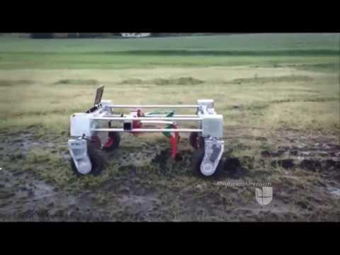 No vas a creer lo que pueden hacer estos 5 robots agricultores