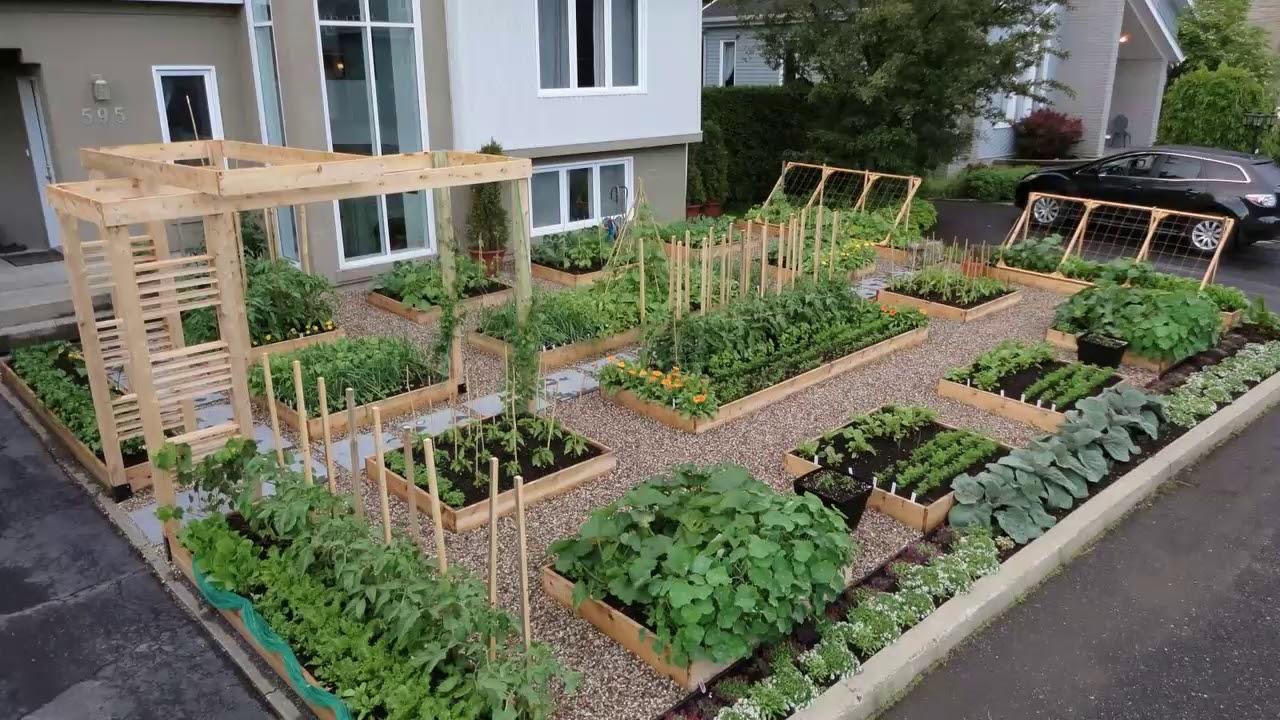17 Ide Kreatif Bikin Kebun Sayur Di Rumah Sendiri